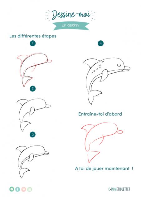 dessin dauphin