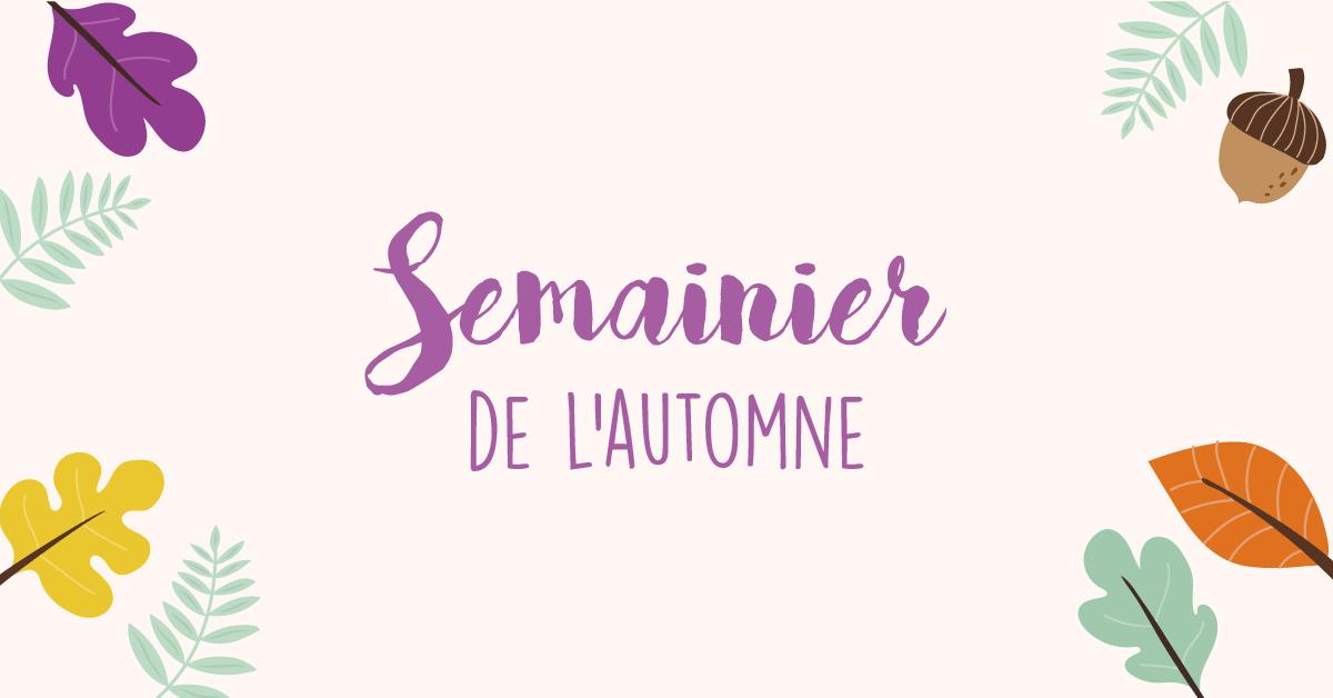 DIY semainier automne 2017