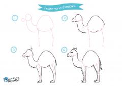 Dessine-moi l'Egypte - dessins et coloriages Dromadaire