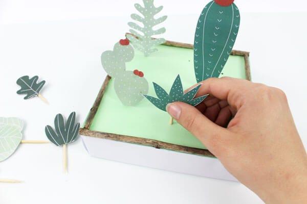 Des plantes faciles à entretenir !