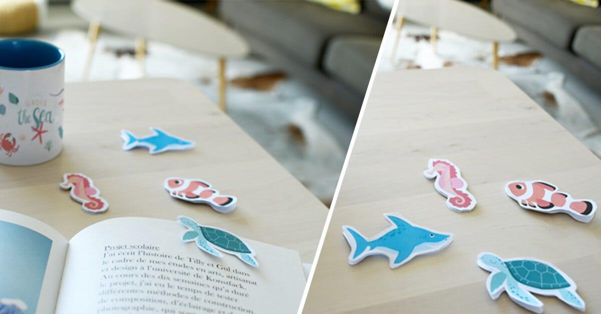 marque-pages animaux de la mer